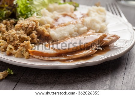 Oven roasted turkey Thanksgiving platter with mashed potatoes, gravy, salad, and stuffing side view - stock photo