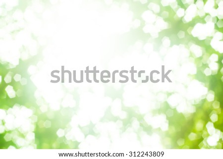 Over blur forest and sky and flower with De focused Bokeh background art - stock photo
