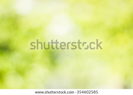 Over blur forest and sky and flower with over light. De focused Bokeh textures background art.Ecology concept. Environment, care, sun concept. christmas concept.  - stock photo