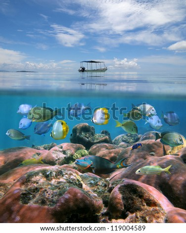 Over-under split view, boat above a coral reef with shoal of tropical fish below the water surface, Caribbean sea - stock photo