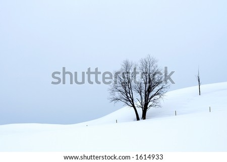 Overcast winter landscape - stock photo