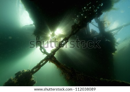 Overgrown chains underwater