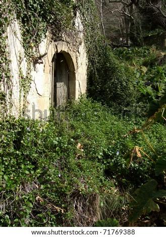 Overgrown Derelict Building - stock photo