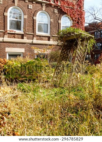 Overgrown fall garden in the Hyde Park neighborhood of Chicago, IL, USA. - stock photo