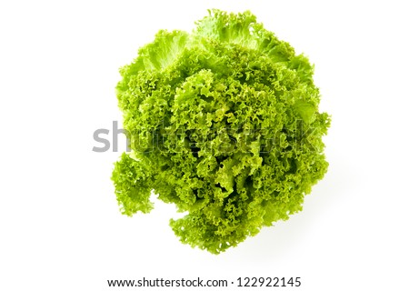 Overhead view of a a head of fresh young green frilly lettuce for use in salads and as a garnish isolated on white - stock photo