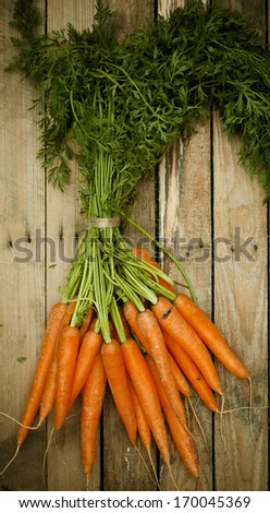Overhead view of a bunch of fresh organic carrots at market with their green leaves still attached lying on a rustic wooden table - stock photo