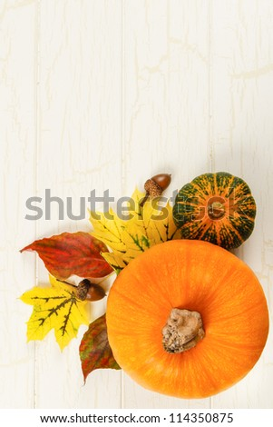 Overhead view of pumpkin with traditional Fall red and yellow leaves, gourds and acorns against aged white wood with copy space at top - stock photo