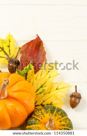 Overhead view of traditional Fall gourds with leaves and acorns on an aged white wood background with copy space at top