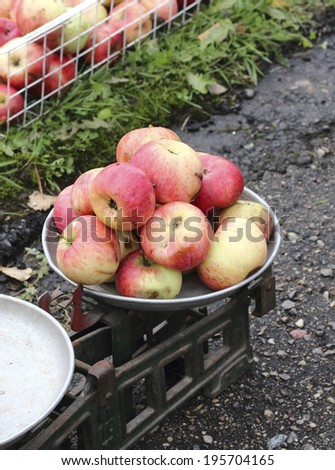 overripe red apples on an old scales - stock photo