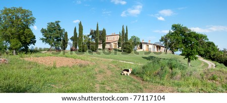 Overview of a hill with cottages in Grosseto