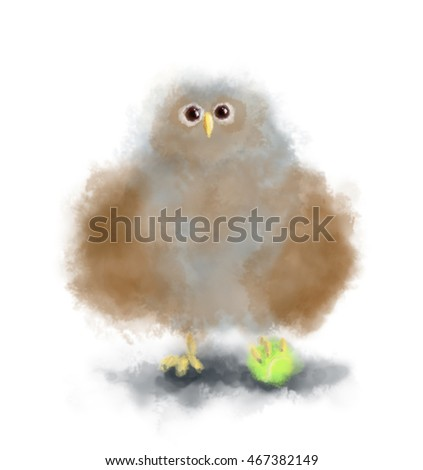 Owl baby plays with tennis ball