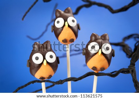 Owl cake pops - stock photo