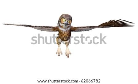 owl flying - stock photo