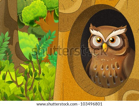 owl in home - stock photo