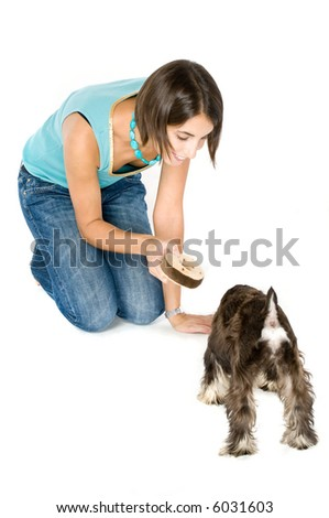 Owner playing with a cute puppy