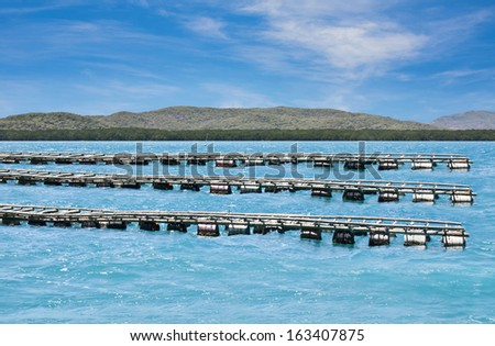 oyster farming on Friday Island Torres Strait - stock photo