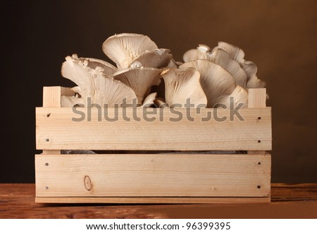 oyster mushrooms in wooden box on table on brown background - stock photo