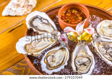 Oysters - stock photo