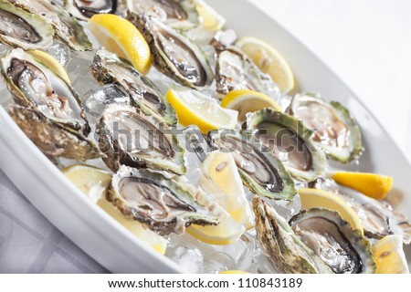 Oysters in a bowl with ice and lemon. - stock photo