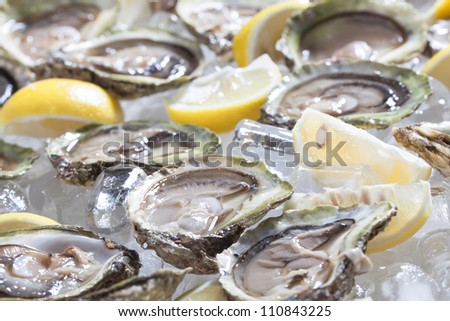 Oysters in a bowl with lemons. - stock photo