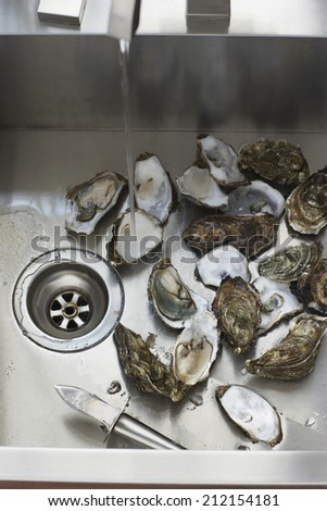 Oysters in kitchen sink, elevated view, close-up - stock photo