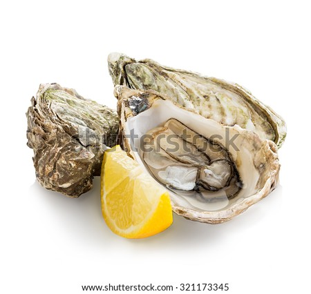 Oysters isolated on a white background - stock photo
