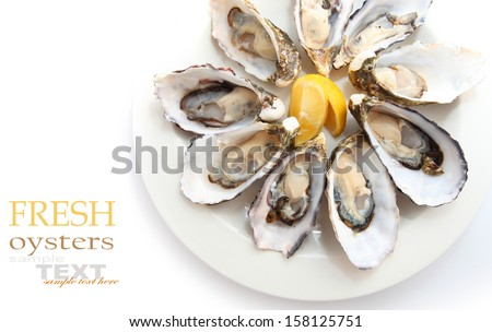 Oysters isolated on white  - stock photo