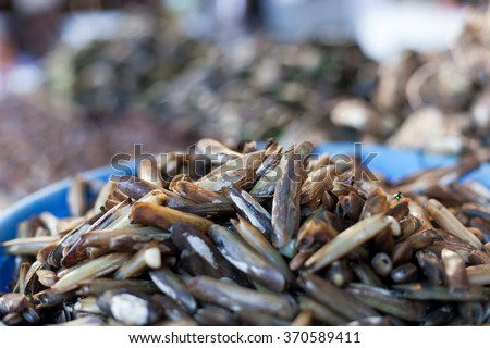 Oysters, mussels and scallops on asian market, Shallow, DOF  - stock photo