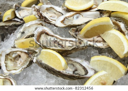 Oysters on ice with lemon. - stock photo