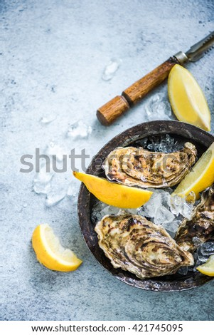 oysters with ice and lemon on slate background from above with copy space - stock photo