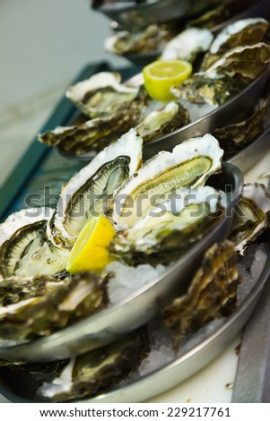 Oysters with lemon on plates ready for use - stock photo