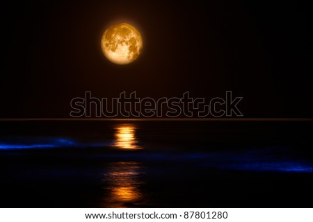 Pacific Coast Waves & Full Moon ~ Red Tide Lingulodinium Polyedrum The electric blue glow in these pacific coast waves is caused by a dinoflagellate bloom commonly referred to as a red tide. - stock photo