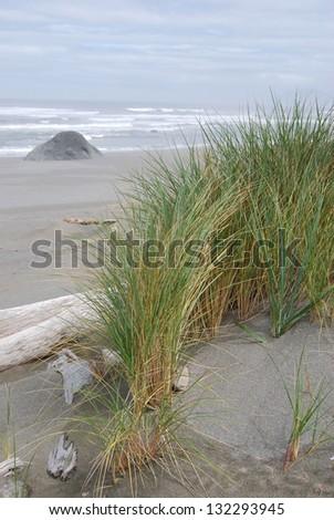 Pacific Ocean Beach Scene - stock photo