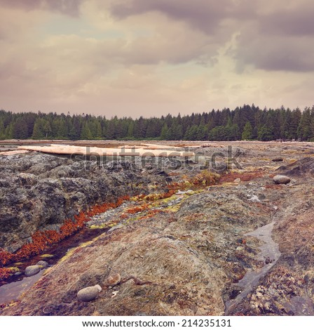 Pacific ocean coast in low tide under the storm sky. British Columbia. Canada .Image done with a vintage retro instagram filter - stock photo