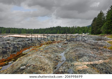 Pacific ocean coast in low tide under the storm sky. Vancouver Island. British Columbia. Canada - stock photo