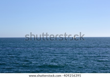 Pacific ocean is clear day. On the blue sea sailing boat with a sail.