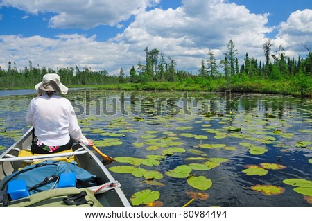 Paddling through the lily pads on Crooked Lake in the Boundary waters - stock photo