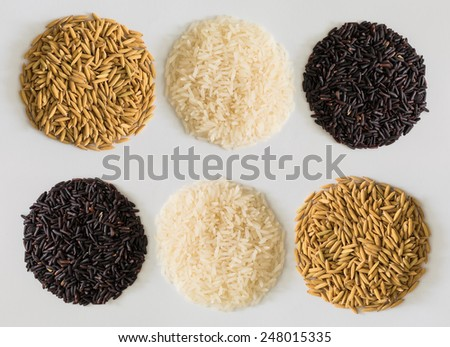 paddy rice,brown rice,white rice is circle shape on white background - stock photo