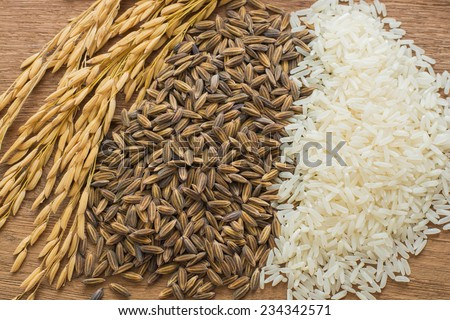 paddy rice,brown rice,white rice on wood background