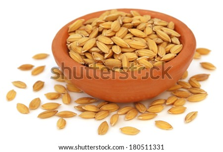 Paddy seeds on clay pot over white background