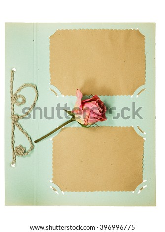 Page from an old album pistachio color. Decorated flower dry rose. Isolated on white background.