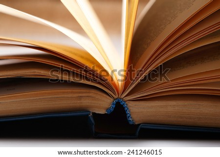 Pages of old book - stock photo