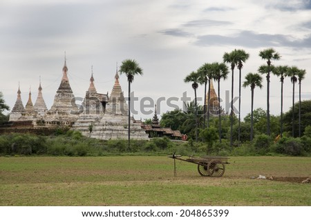 Pagodas and toddy palms in Bagan, Burma, Myanmar - stock photo