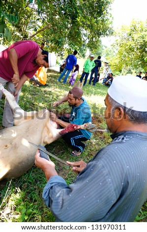 PAHANG, MALAYSIA - OKTOBER 26: Abdul Malik sharpen knife in slaughtering a cow during Eid Al-Adha Al Mubarak, the Feast of Sacrifice on Oktober 26, 2012 in Pahang, Malaysia. - stock photo