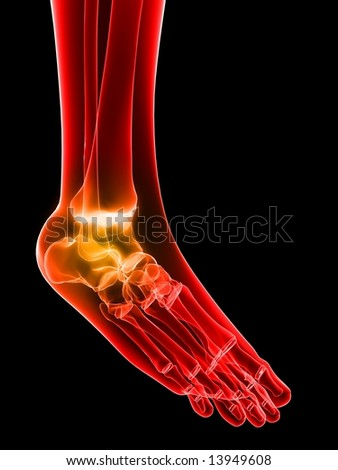 painful ankle - stock photo