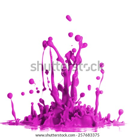 Paint Splash isolated in White Background - stock photo