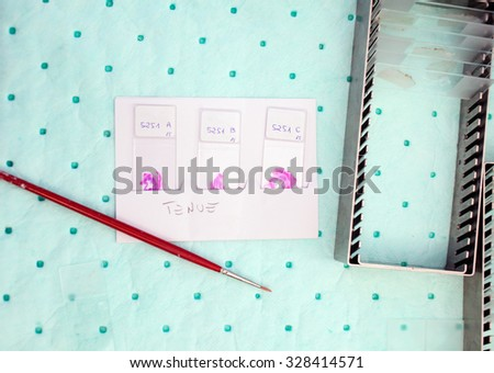 Paintbrush and others tools of a chemical laboratory - stock photo