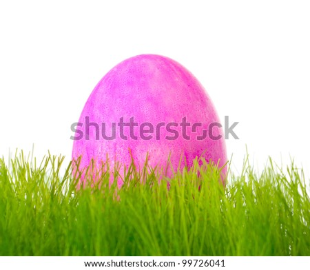 Painted colorful Easter eggs in the grass - stock photo