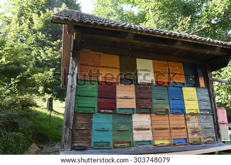 Painted colourful wooden beehive, isolated. Close-up. Honey. Bees. Traditional. Apiary. Beekeeping. Apiology. Farming. Carniolan honey bee. Apis melifera carnica. Slovenia.  - stock photo