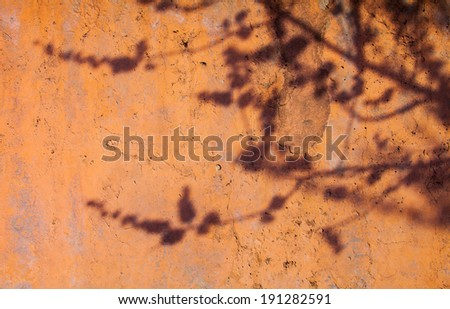 Painted concrete surface with the shadow of the tree branch - stock photo